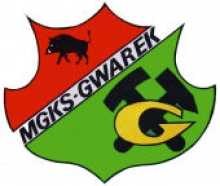 mgks-gwarek-leczna