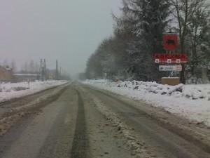 Droga Leczna - Kijany