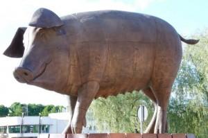 Świnia pomnik