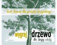 Duze drzewa plakat
